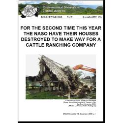 Boletín 49: Diciembre 2009