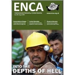 Boletín 61: Agosto 2014