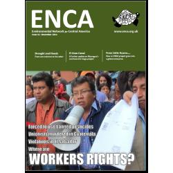 Boletín 62: Noviembre 2014