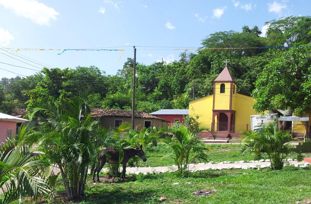 San Juan - la tierra cooperativa está unos 30 minutos a pie detrás del pueblo